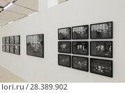 Купить «Москва, Фотобиеннале 2018 в Манеже», эксклюзивное фото № 28389902, снято 2 мая 2018 г. (c) Дмитрий Неумоин / Фотобанк Лори