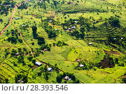 Купить «Aerial view of deforested forest slopes replaced by farmland for subsistence agriculture in Malawi. March 2015.», фото № 28393546, снято 18 августа 2018 г. (c) Nature Picture Library / Фотобанк Лори