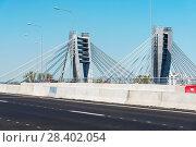 Купить «Пилоны моста Бетанкура. Санкт-Петербург», эксклюзивное фото № 28402054, снято 12 мая 2018 г. (c) Александр Щепин / Фотобанк Лори