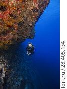 Купить «Female scuba diver swim next to a sheer wall covered with beautiful corals», фото № 28405154, снято 13 марта 2018 г. (c) Некрасов Андрей / Фотобанк Лори