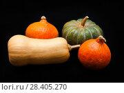 Купить «Colorful pumpkin and squash, Red Kuri, Kabocha, Butternut», фото № 28405270, снято 19 октября 2017 г. (c) Сурикова Ирина / Фотобанк Лори
