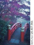 Купить «Arched red bridge in a Japanese garden, misty autumn scenery in Kyoto, Japan.», фото № 28407966, снято 21 ноября 2017 г. (c) age Fotostock / Фотобанк Лори