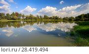Купить «Облака отражаются в воде лесного озера летним днем», фото № 28419494, снято 15 сентября 2015 г. (c) Яна Королёва / Фотобанк Лори