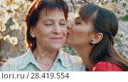 Купить «Daughter kissing her elderly mother», видеоролик № 28419554, снято 2 мая 2018 г. (c) Илья Шаматура / Фотобанк Лори
