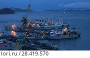 Купить «Ночной вид на морской порт в городе Петропавловске-Камчатском», видеоролик № 28419570, снято 16 мая 2018 г. (c) А. А. Пирагис / Фотобанк Лори