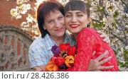 Купить «Adult daughter hugging her mother», видеоролик № 28426386, снято 2 мая 2018 г. (c) Илья Шаматура / Фотобанк Лори
