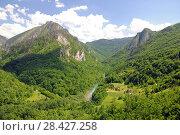 Купить «Вид на каньон реки Тара с моста Джурджевича в Черногории», фото № 28427258, снято 6 июня 2017 г. (c) Рябков Александр / Фотобанк Лори