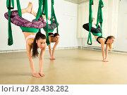 Купить «Young woman performing aerial yoga exercise», фото № 28438282, снято 13 мая 2018 г. (c) Владимир Мельников / Фотобанк Лори
