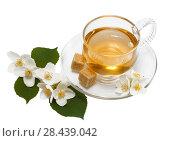 Купить «Жасминовый чай в стеклянной чашке и цветы жасмина на белом фоне изолировано. Натюрморт», фото № 28439042, снято 26 июня 2011 г. (c) Наталья Волкова / Фотобанк Лори