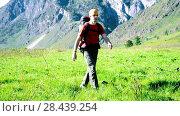Купить «Hiking man walking on green mountain meadow with backpack. Summer sport and recreation concept.», видеоролик № 28439254, снято 17 апреля 2018 г. (c) Александр Маркин / Фотобанк Лори