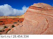 Купить «Sandstone coloured layers in Valley of Fire State Park, Nevada, USA», фото № 28454334, снято 27 мая 2018 г. (c) Nature Picture Library / Фотобанк Лори