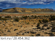 Купить «Waterpocket fold in Capitol Reef National Park, Utah, USA, March 2014.», фото № 28454362, снято 24 мая 2018 г. (c) Nature Picture Library / Фотобанк Лори