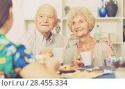 Купить «Smiling elderly spouses enjoying tea with girl», фото № 28455334, снято 28 августа 2017 г. (c) Яков Филимонов / Фотобанк Лори