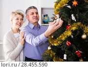 Купить «couple preparing to celebrate in his home Christmas and New Year», фото № 28455590, снято 15 ноября 2018 г. (c) Яков Филимонов / Фотобанк Лори