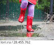 Купить «Child's feet in rubber boots. Summer, puddles, rain», фото № 28455762, снято 14 ноября 2019 г. (c) Ирина Козорог / Фотобанк Лори