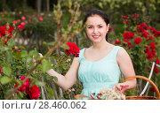 Купить «portrait of young female holding a basket near roses in outdoors», фото № 28460062, снято 18 апреля 2017 г. (c) Яков Филимонов / Фотобанк Лори