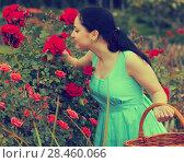 Купить «woman with long curly hair smells roses flower outdoor», фото № 28460066, снято 18 апреля 2017 г. (c) Яков Филимонов / Фотобанк Лори