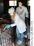 Купить «Veterinarians holding syringes and bottles», фото № 28460174, снято 21 октября 2018 г. (c) Яков Филимонов / Фотобанк Лори