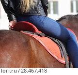 Купить «Стройная девушка на коне в красном седле», эксклюзивное фото № 28467418, снято 9 мая 2017 г. (c) Анатолий Матвейчук / Фотобанк Лори