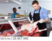 Купить «Skillful butcher processing carcase of young lamb for sale at butchery», фото № 28467986, снято 20 апреля 2018 г. (c) Яков Филимонов / Фотобанк Лори