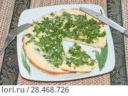 Купить «Омлет с зеленью на тарелке. Фокус по центру», эксклюзивное фото № 28468726, снято 20 сентября 2018 г. (c) Svet / Фотобанк Лори