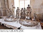 Купить «School of sculptors, restoration of sculptures, workshop repair depot», фото № 28470254, снято 2 марта 2014 г. (c) Сурикова Ирина / Фотобанк Лори