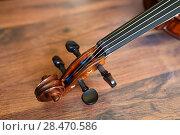 Купить «Violin tune chorus head», фото № 28470586, снято 26 мая 2018 г. (c) Знаменский Олег / Фотобанк Лори