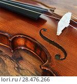 Купить «Violin on wooden background», фото № 28476266, снято 26 мая 2018 г. (c) Знаменский Олег / Фотобанк Лори