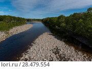 Купить «Scenic view of a river in forest, Petit Etang, Cabot Trail, Cape Breton Island, Nova Scotia, Canada», фото № 28479554, снято 12 июня 2016 г. (c) Ingram Publishing / Фотобанк Лори