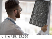Купить «Closeup portrait of intellectual man healthcare personnel with white labcoat, looking at brain x-ray radiographic image, ct scan, mri, clinic office background. Radiology department», фото № 28483350, снято 5 июня 2015 г. (c) Ingram Publishing / Фотобанк Лори
