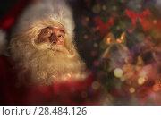 Купить «Santa Claus near Christmas tree. Festive holiday background», фото № 28484126, снято 31 января 2013 г. (c) Ingram Publishing / Фотобанк Лори
