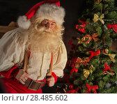 Купить «Portrait of Santa Claus carrying huge sack with presents indoor at home near Christmas tree», фото № 28485602, снято 31 января 2013 г. (c) Ingram Publishing / Фотобанк Лори