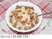 Купить «Завтрак, каша овсяная с маслом и изюмом», эксклюзивное фото № 28488154, снято 30 мая 2018 г. (c) Svet / Фотобанк Лори