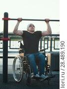 Купить «Muscular disabled man in wheelchair in front of the crossbar outdoors», фото № 28489190, снято 28 мая 2018 г. (c) Константин Шишкин / Фотобанк Лори