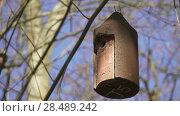 Купить «Small birdhouse hanging on tree branch», видеоролик № 28489242, снято 7 апреля 2018 г. (c) BestPhotoStudio / Фотобанк Лори