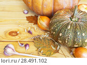 Купить «Ripe pumpkins, onions, garlic and ears of cereals on a wooden background. Autumn rustic still life. Empty space for text», фото № 28491102, снято 20 апреля 2018 г. (c) Виктория Катьянова / Фотобанк Лори