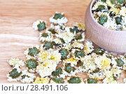 Купить «Dry flowers of chrysanthemum for curative green tea on a wooden table», фото № 28491106, снято 20 апреля 2018 г. (c) Виктория Катьянова / Фотобанк Лори