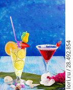 Купить «Lemon Mojito and red Margarita cocktails in Caribbean blue wood with flowers and seashells», фото № 28492854, снято 27 марта 2019 г. (c) Ingram Publishing / Фотобанк Лори