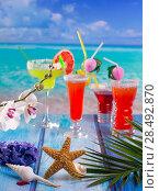 Купить «Cocktails margarita sex on the beach in colorful tropical house with flowers starfish and seashells», фото № 28492870, снято 27 марта 2019 г. (c) Ingram Publishing / Фотобанк Лори
