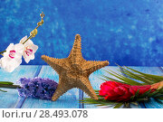 Купить «Starfish with hyacinth flower and white orchid on blue wood  background», фото № 28493078, снято 26 апреля 2019 г. (c) Ingram Publishing / Фотобанк Лори