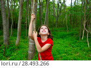 Купить «Happy kid girl playing in forest park jungle with liana looking up», фото № 28493266, снято 21 апреля 2019 г. (c) Ingram Publishing / Фотобанк Лори