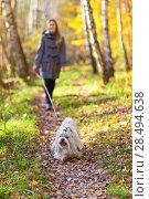 Купить «Young woman walking with dog», фото № 28494638, снято 6 октября 2013 г. (c) Ingram Publishing / Фотобанк Лори