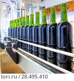 Купить «Red wine in glass bottling machine at winery», фото № 28495410, снято 4 сентября 2013 г. (c) Ingram Publishing / Фотобанк Лори