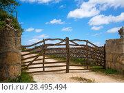Menorca traditional olive tree wooden fence gate in Balearic islands. Стоковое фото, фотограф Tono Balaguer / Ingram Publishing / Фотобанк Лори