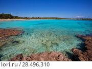 Купить «Menorca Son Saura beach in Ciutadella turquoise color at Balearic islands», фото № 28496310, снято 25 мая 2013 г. (c) Ingram Publishing / Фотобанк Лори