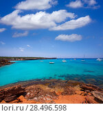 Купить «Formentera Cala Saona beach one of the best beaches in world near Ibiza», фото № 28496598, снято 16 августа 2018 г. (c) Ingram Publishing / Фотобанк Лори