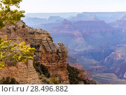 Купить «Arizona Grand Canyon National Park Mother Point in USA», фото № 28496882, снято 14 апреля 2013 г. (c) Ingram Publishing / Фотобанк Лори