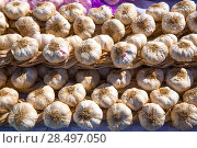 Купить «Garlic bunches stacked in a row at Spain», фото № 28497050, снято 6 октября 2013 г. (c) Ingram Publishing / Фотобанк Лори