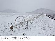 Купить «Cereal fields with irrigation wheels with snow in Nevada USA», фото № 28497154, снято 16 апреля 2013 г. (c) Ingram Publishing / Фотобанк Лори