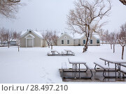 Купить «Nevada USA first snow at the park covering all in white», фото № 28497210, снято 16 апреля 2013 г. (c) Ingram Publishing / Фотобанк Лори